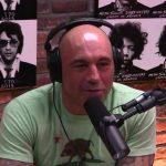 Best Joe Rogan podcasts in every category